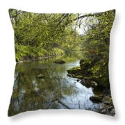 Whitewater River Spring 10 Throw Pillow