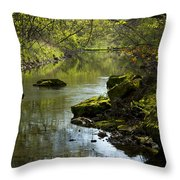 Whitewater River Spring 11 Throw Pillow
