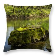 Whitewater River Spring 12 Throw Pillow