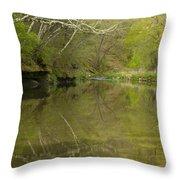 Whitewater River Spring 13 Throw Pillow