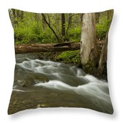 Whitewater River Spring 18 Throw Pillow