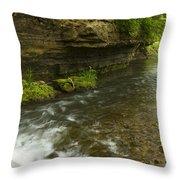 Whitewater River Spring 6 Throw Pillow