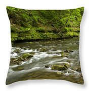 Whitewater River Spring 8 A Throw Pillow