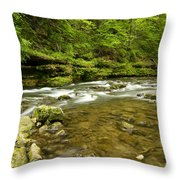 Whitewater River Spring 8 C Throw Pillow