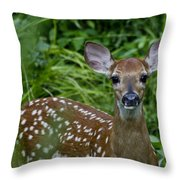 Who Are You Throw Pillow