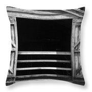 Who Opened The Barn Door Throw Pillow by Teresa Mucha