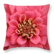 Whole Lotta Pink Throw Pillow