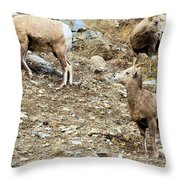 Who's On First? Throw Pillow