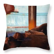 Whos Your Seal Throw Pillow