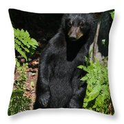Whose Coming To Visit? Throw Pillow