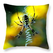 Wicked Spider Paint Throw Pillow