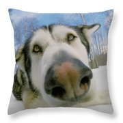 Wide Angle Dog Throw Pillow