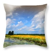 Wide Country Throw Pillow