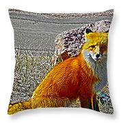 Wilbur Throw Pillow
