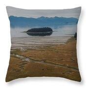 Wild Alaska Coast Throw Pillow
