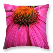 Wild Berry Purple Cone Flower Throw Pillow
