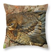 Wild Bird Throw Pillow