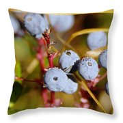 Wild Blue Berries With Water Drops  Throw Pillow