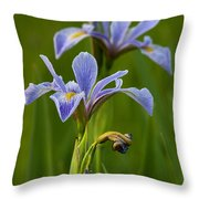 Wild Blue Flag Iris Throw Pillow