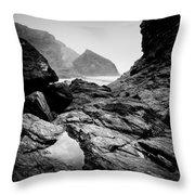 Wild Coast Throw Pillow