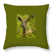Wild Doe Throw Pillow