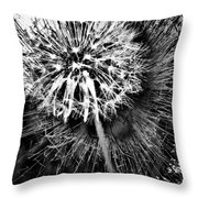 Wild Eyes  Throw Pillow