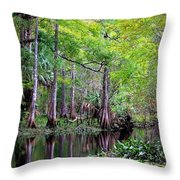 Wild Florida - Hillsborough River Throw Pillow