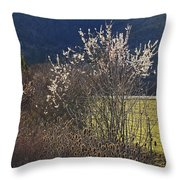 Wild Fruit Tree In The Country Throw Pillow