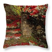 Wild Garden, Rowallane Garden, Co Down Throw Pillow