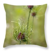 Wild Garlic - Allium Vineale Throw Pillow