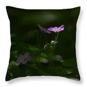 Wild Geranium In Woodland Light Throw Pillow
