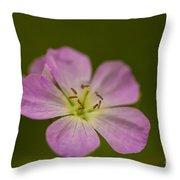 Wild Geranium  Throw Pillow