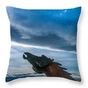 Wild Horse Sculpture Throw Pillow
