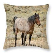 Wild Horses Wyoming - The Mare Throw Pillow