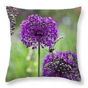 Wild Onion Flower Throw Pillow