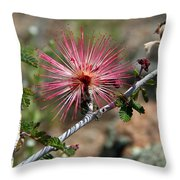 Wild Pink Fairy Duster Throw Pillow