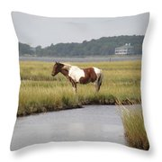 Wild Pony In The Marsh On Assateague Island Md Throw Pillow