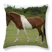 Wild Pony On Assateague Island Maryland Throw Pillow
