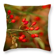 Wild Red Berry Reflections Throw Pillow
