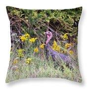 Wild Turkey - Gobbler - Thanksgiving Throw Pillow