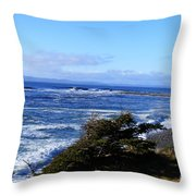 Wild Waves Throw Pillow