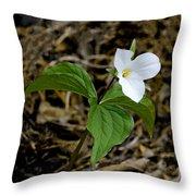 Wild White Trillium Throw Pillow