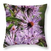 Wildflower Days Throw Pillow