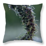 Wildflower Dew Covered Throw Pillow