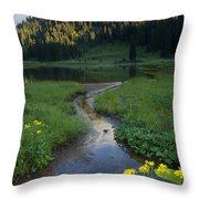Wildflower Stream Throw Pillow