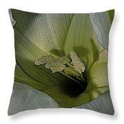 Wildflower Window Throw Pillow by Chris Berry