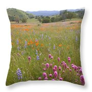 Wildflower Wonderland 6 Throw Pillow