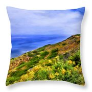 Wildflowers At Point Loma Throw Pillow