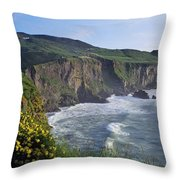 Wildflowers At The Coast, County Throw Pillow