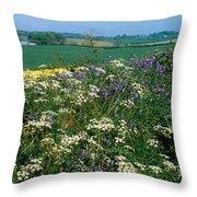 Wildflowers, Near Seaforde, Co Down Throw Pillow